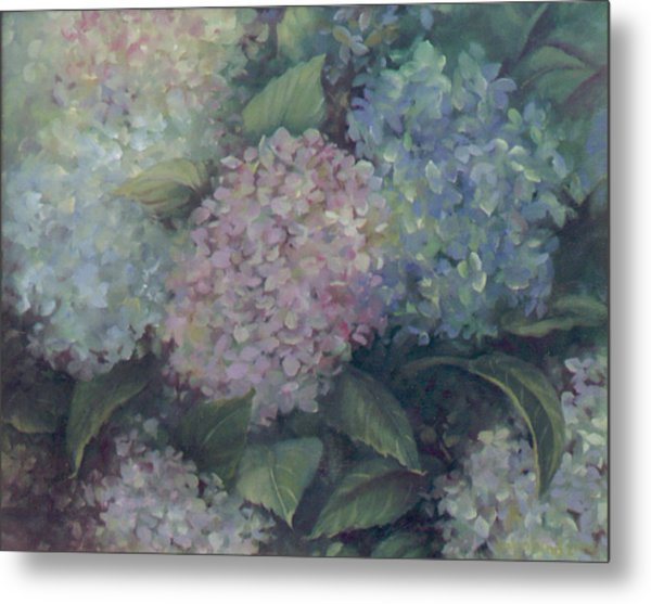 More Hydrangeas Metal Print