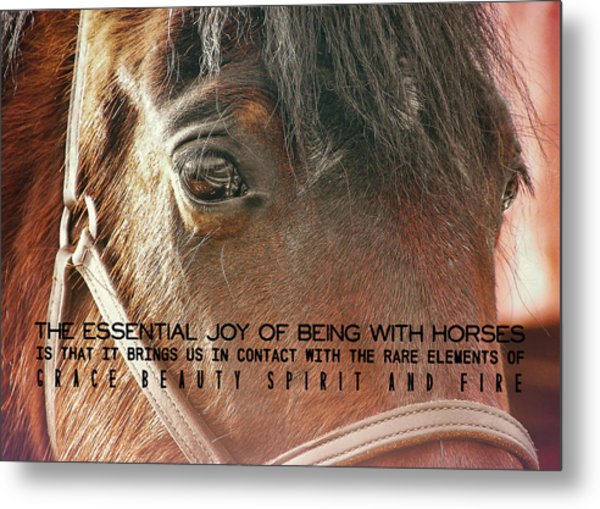 Morgan Horse Quote Metal Print by JAMART Photography