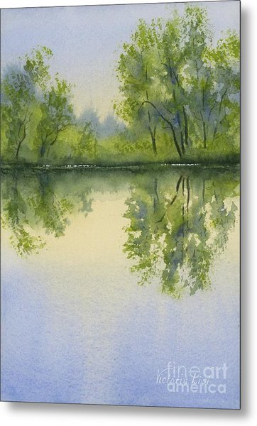 Morning At Turtle Pond Metal Print