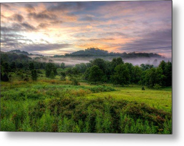 Morning Fog Metal Print