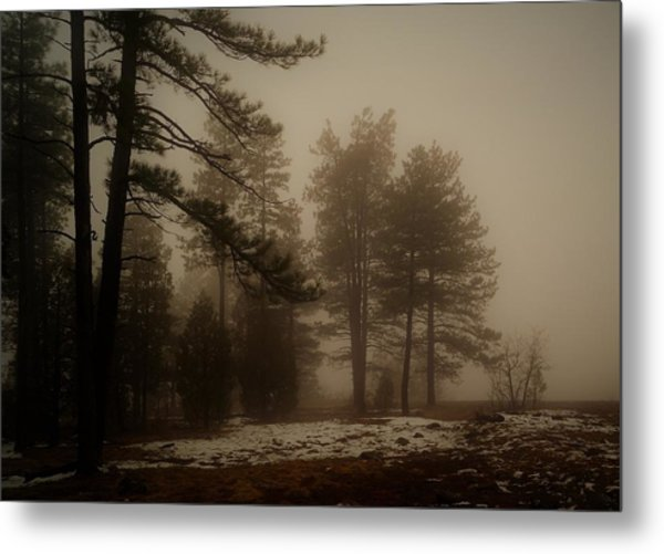 Metal Print featuring the photograph Morning Fog by Broderick Delaney