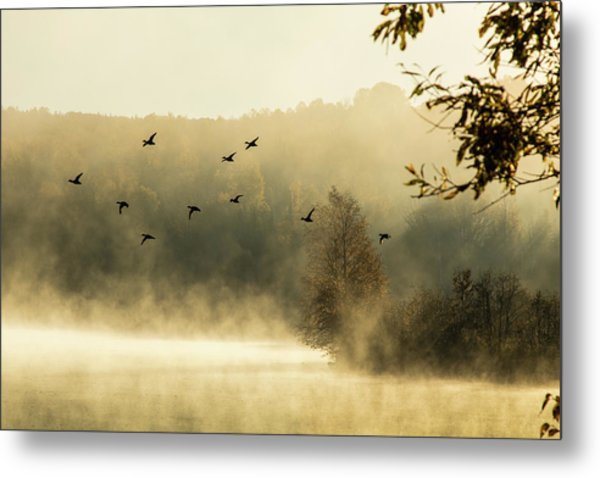 Morning Fog On Haley Pond In Rangeley Maine Metal Print