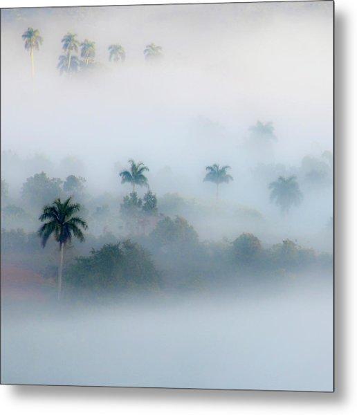 Morning Fog, Vinales Valley Metal Print