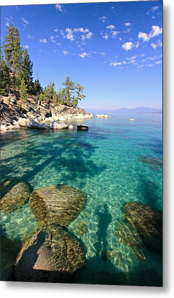 Morning Glory At The Cove Metal Print