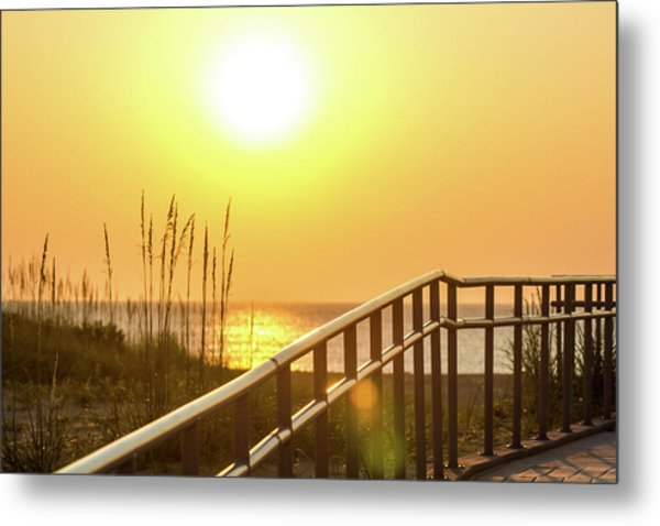 Morning Gold Metal Print by AM Photography