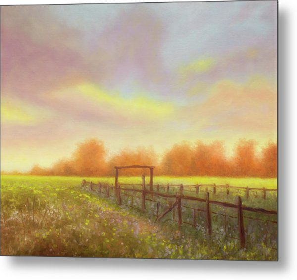Morning In Texas - No 5 Metal Print by Rob Blauser