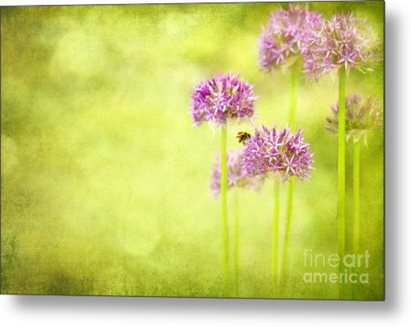 Morning In The Garden Metal Print