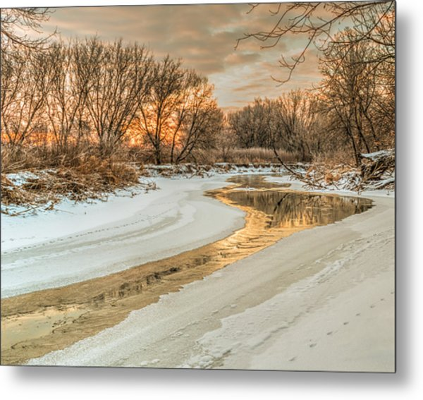 Morning Light On The Riverbank Metal Print