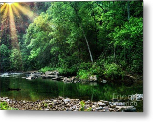 Morning Light On Williams River  Metal Print