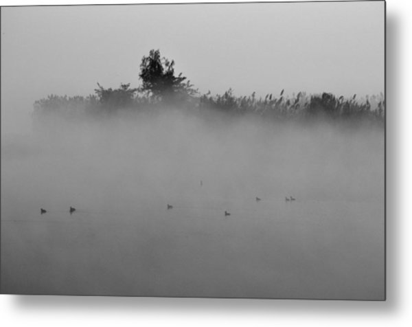 Morning Mist At Wetland Of Harike Metal Print