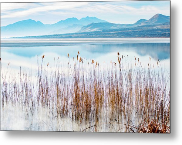 Morning Mist On The Lake Metal Print