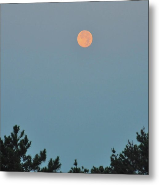 Morning Moon Metal Print by JAMART Photography