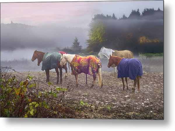 Morning Mudders Metal Print