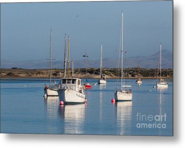 Morning On Morro Bay B3984 Metal Print