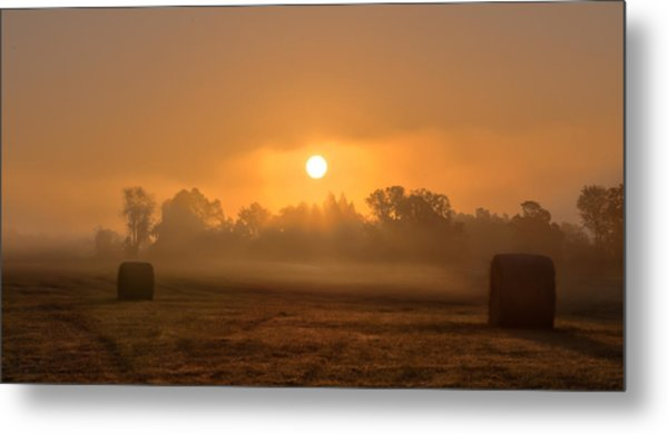 Morning On The Farm Metal Print
