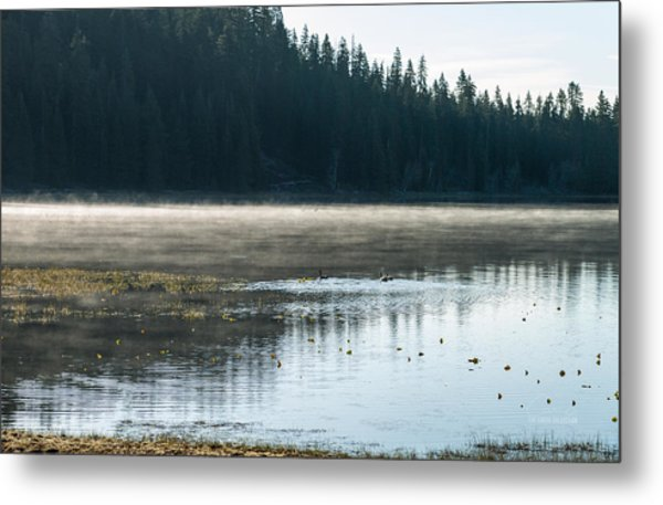 Morning On Wilson Lake  Metal Print