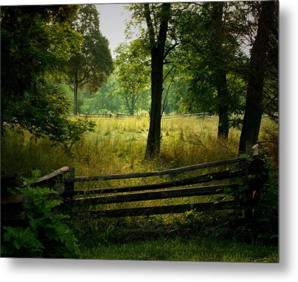 Morning Pasture Metal Print