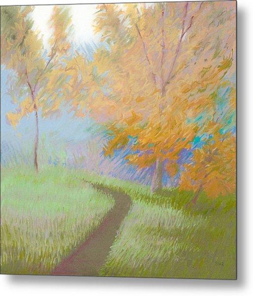 Morning Path 2 Metal Print by Bruce Richardson
