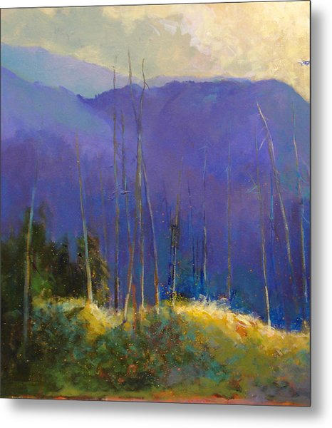 Morning Practices Metal Print by Dale  Witherow