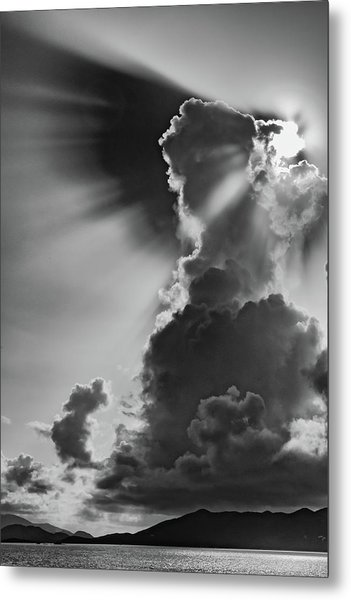 Morning Shadow Metal Print