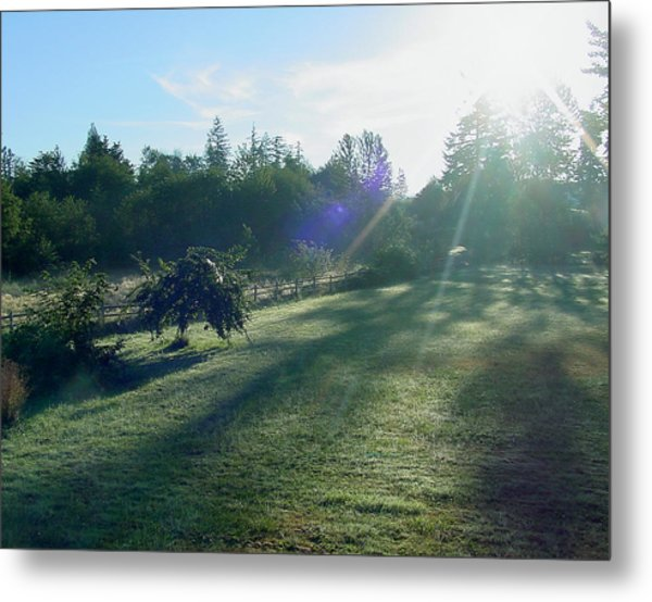 Morning Shadows Metal Print