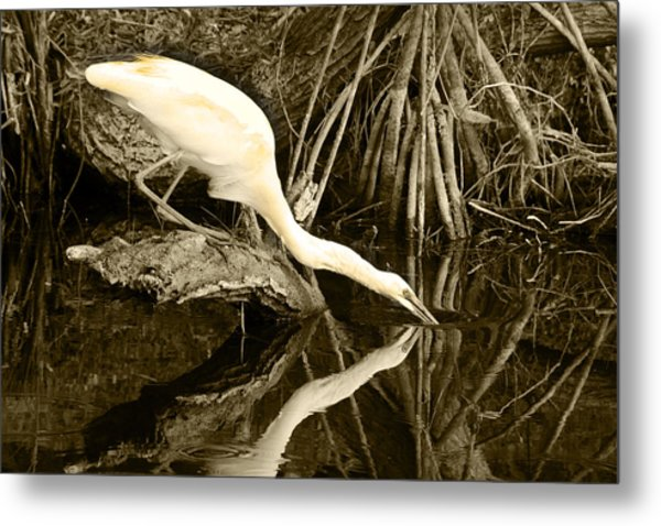 Morning Sip II Metal Print by Jody Lovejoy