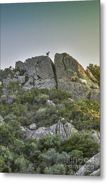 Morning Sun Lit Rocky Hill Greece Metal Print