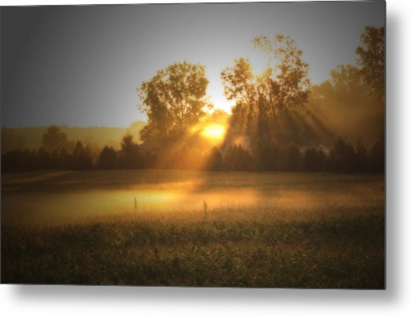 Morning Sunrise On The Cornfield Metal Print