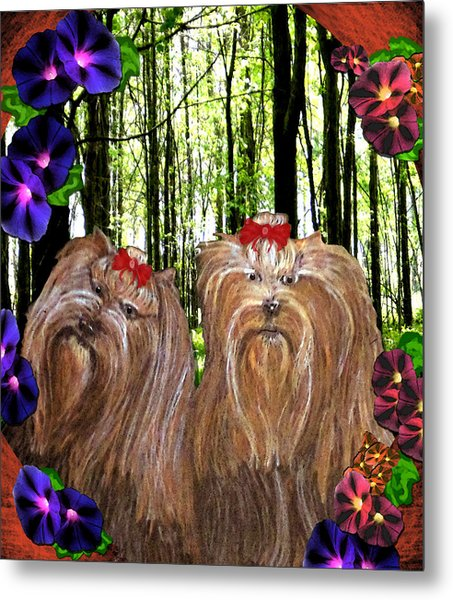Metal Print featuring the digital art Morning Yorkies by Michelle Audas