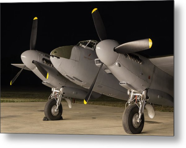 Mosquito Night Metal Print