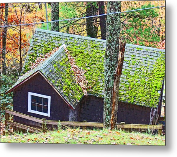 Moss Roof Metal Print by Beebe  Barksdale-Bruner