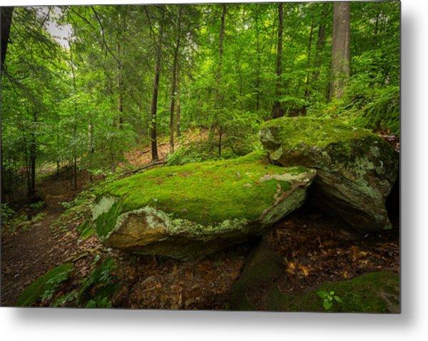 Mossy Rocks In Little Creek Park Metal Print
