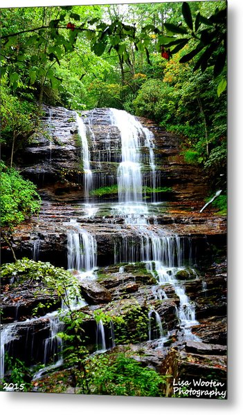 Metal Print featuring the photograph Most Beautiful by Lisa Wooten