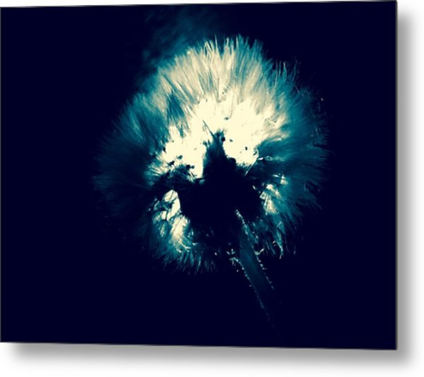 Moth Man Metal Print