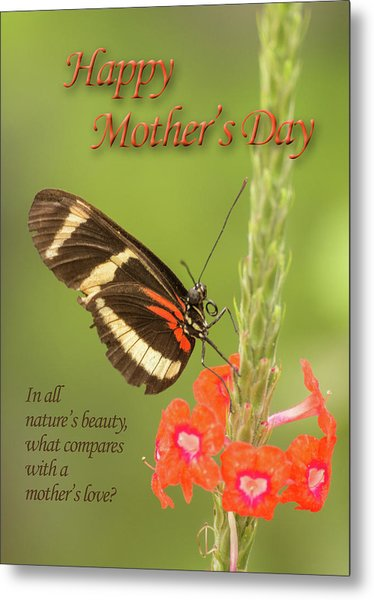 Mother's Day-butterfly Metal Print