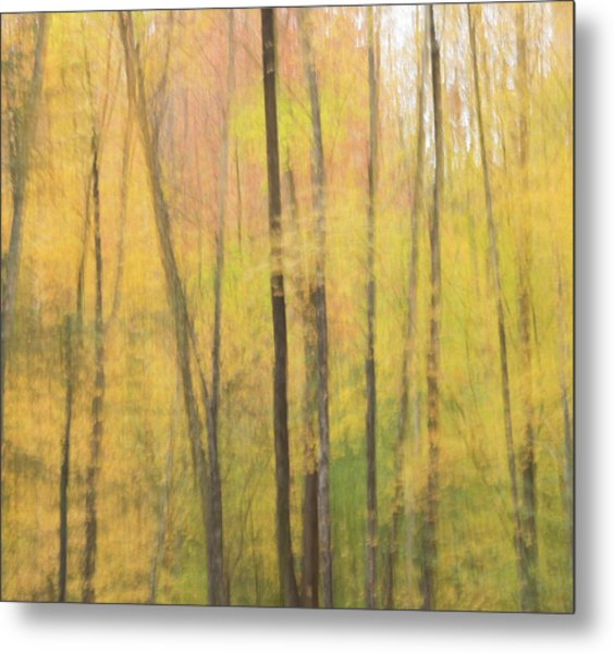 Motion In Color Metal Print