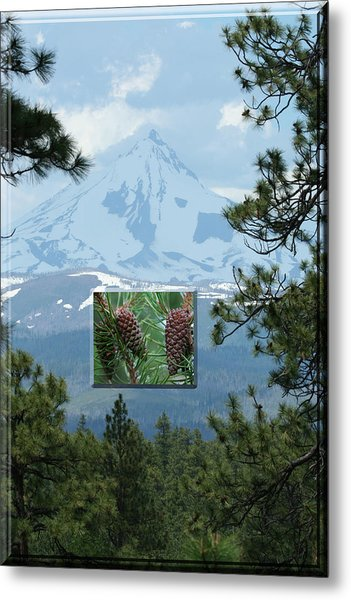 Mount Jefferson With Pines Metal Print