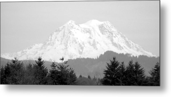 Mount Rainier Black And White Metal Print by Laurie Kidd