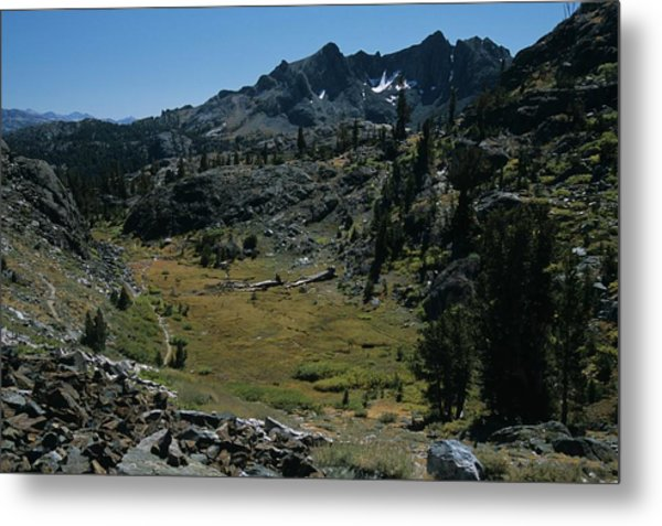 Mount Ritter And Meadow Metal Print