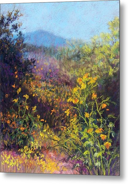 Mountain Beauty Metal Print by Candy Mayer