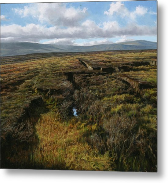 Mountain Heather Metal Print by Eugene Conway
