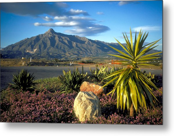 Mountain In Marbella Metal Print by Carl Purcell