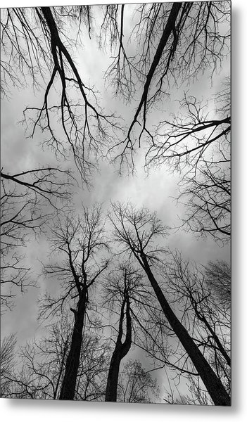 Mountain Lakes Nature Preserve Metal Print