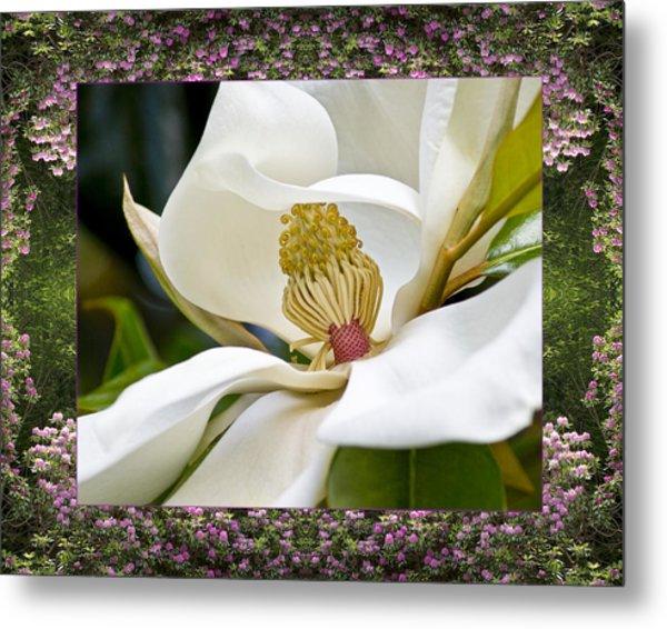 Mountain Magnolia Metal Print