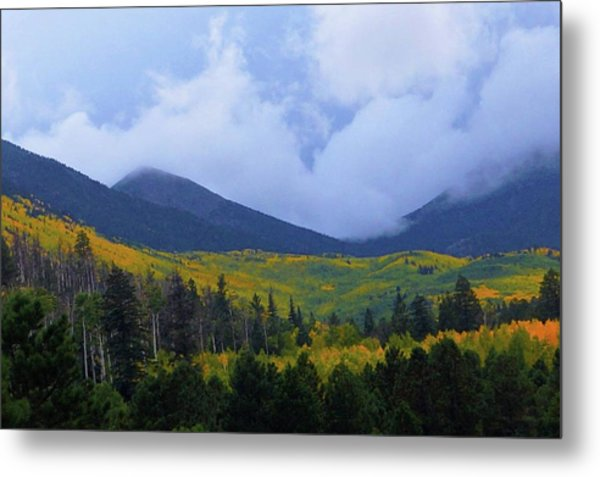 Metal Print featuring the photograph Mountain Majesty by Broderick Delaney