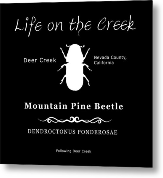 Mountain Pine Beetle White On Black Metal Print