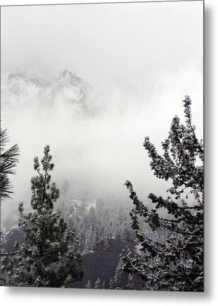 Mountain Top Pine Iv Metal Print by D Kadah Tanaka