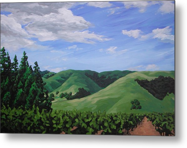 Mountains And  Vineyard Metal Print