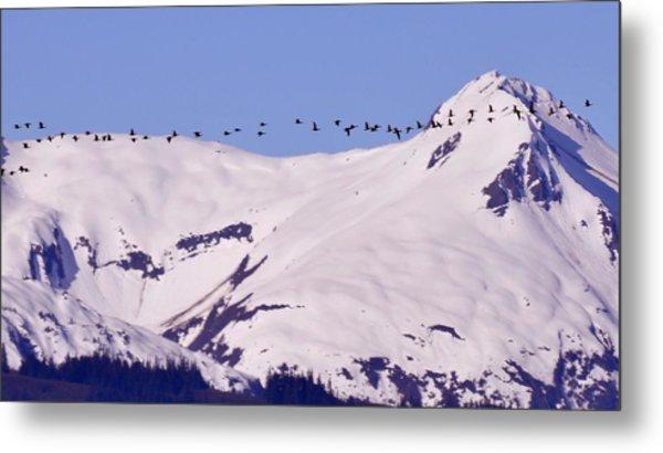 Mountaintop Geese II Metal Print