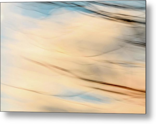 Moving Branches Moving Clouds Metal Print